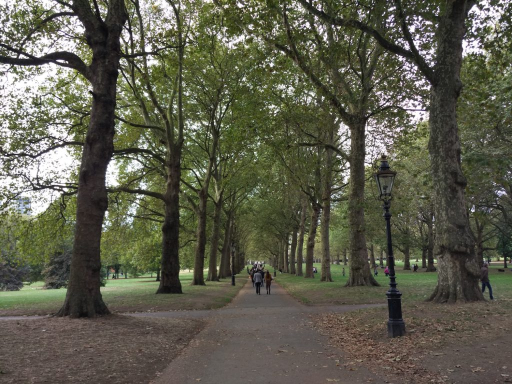 We walked along the Hyde Park to go to the other side.